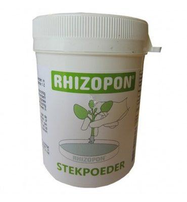 rhizopon-poeder-chryzotop-025-20-gr